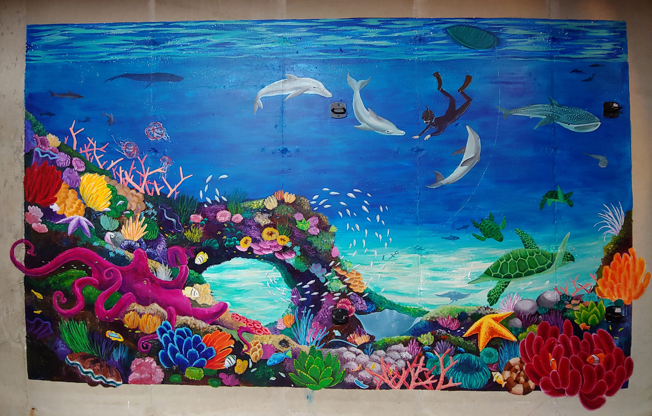 Underwater Mural on Concrete Wall
